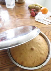 tips-tricks-technics-tactics-pineapple-upside-down-cake